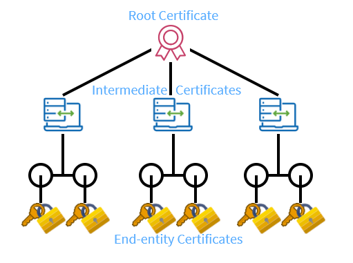 What is the Certificate Chain of Trust?
