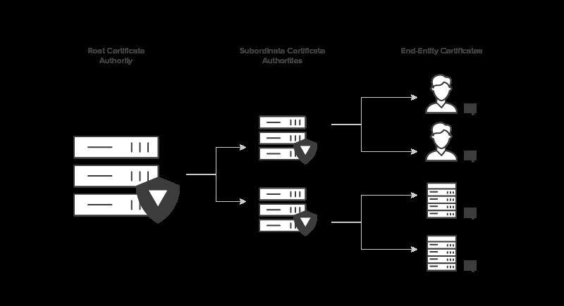 Jerarquías de CA PKI y CA raíz