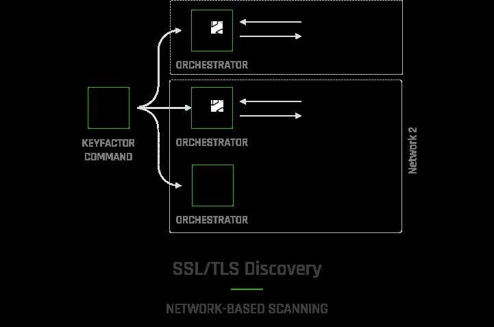 SSL TLS Discovery