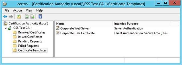 Certificate SAN